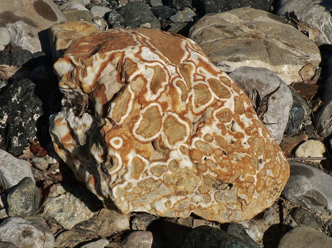 grossi Galli roccia